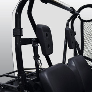 PIONEER 500 REAR WINDSHIELD & BACK PANEL COMBO