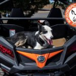 Razorback Offroad Heat shiled is Pet Safe